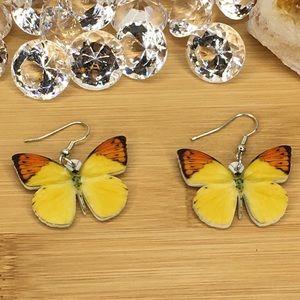 Pieridae Acrylic Butterfly Earrings